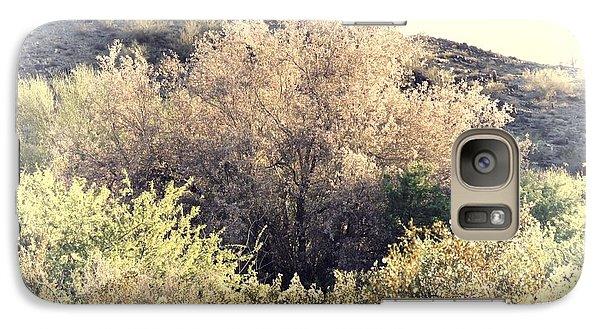 Desert Ironwood Afternoon Galaxy S7 Case