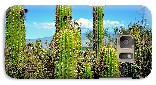 Galaxy Case featuring the photograph Desert Plants - All In The Family by Glenn McCarthy