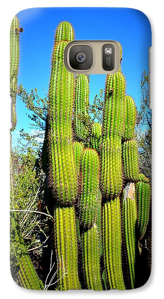 Galaxy Case featuring the photograph Desert Plants - Standing Tall by Glenn McCarthy