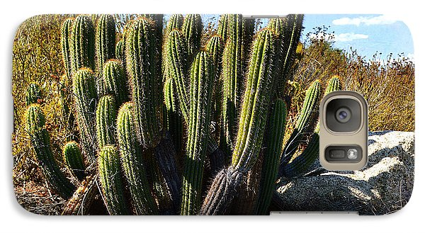 Galaxy Case featuring the photograph Desert Plants - The Wild Bunch by Glenn McCarthy