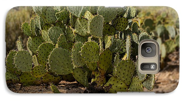 Desert Prickly-pear No6 Galaxy S7 Case