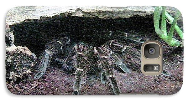Desert Tarantula Galaxy S7 Case