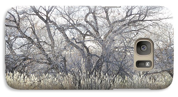 Galaxy Case featuring the photograph Desert Tree Willows by Andrea Hazel Ihlefeld