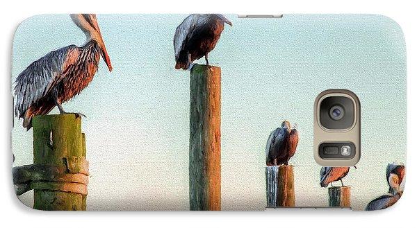 Destin Pelicans-the Peanut Gallery Galaxy S7 Case by JC Findley