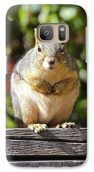 Galaxy Case featuring the photograph Did You Take My Nuts by James Steele