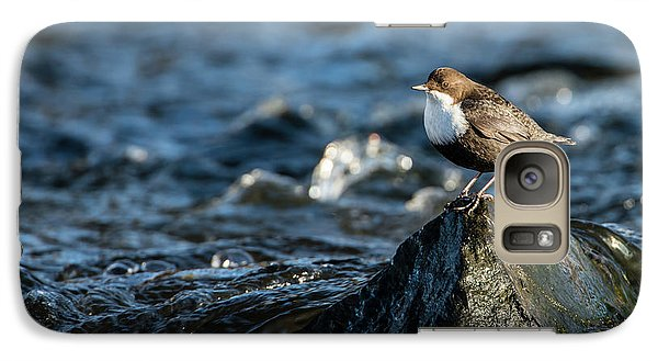 Galaxy Case featuring the photograph Dipper On The Rock by Torbjorn Swenelius