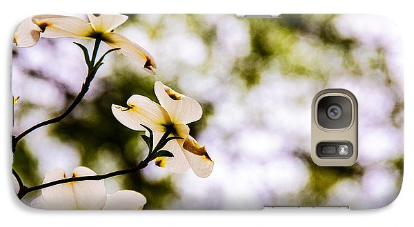 Galaxy Case featuring the photograph Dogwoods Under The Pines by John Harding
