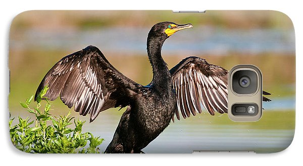 Double-crested Cormorant Galaxy S7 Case by Gary Lengyel