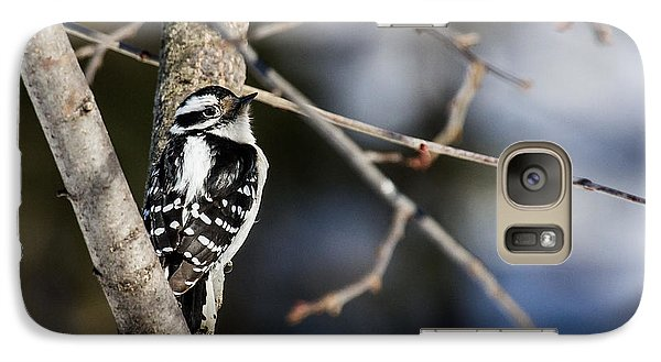Galaxy Case featuring the photograph Downy Woodpecker by Dan Traun