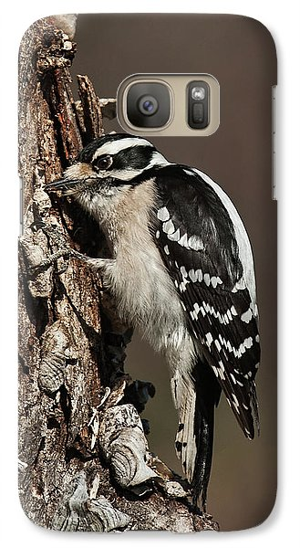 Galaxy Case featuring the photograph Downy Woodpecker's Secret Stash by Lara Ellis