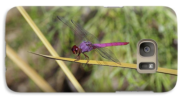 Galaxy Case featuring the photograph Dragonfly by David Rizzo