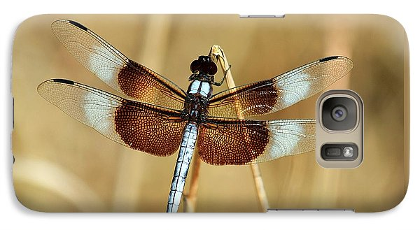 Galaxy Case featuring the photograph Dragonfly On Reed by Sheila Brown
