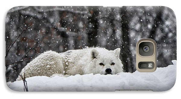 Galaxy Case featuring the photograph Dreams Of Warmer Weather by Heather King