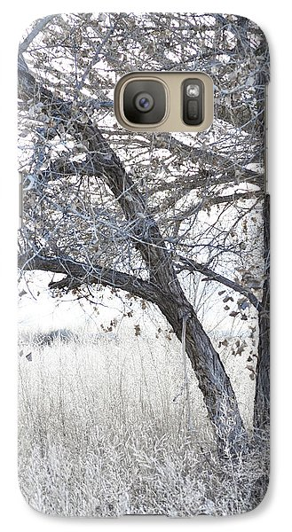 Galaxy Case featuring the photograph Dreamy Bosque Tree by Andrea Hazel Ihlefeld