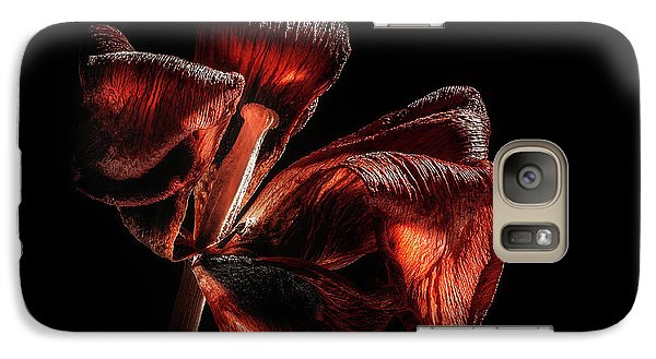 Tulip Galaxy S7 Case - Dried Tulip Blossom by Scott Norris