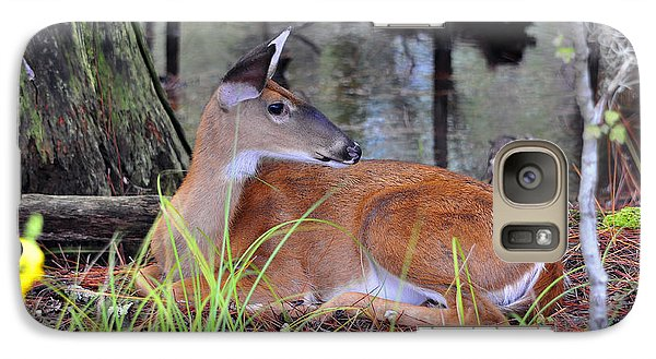 Galaxy Case featuring the photograph Drowsy Deer by Al Powell Photography USA