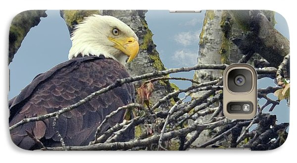 Galaxy Case featuring the photograph Eagle In Nest by Rod Wiens
