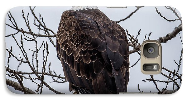 Galaxy Case featuring the photograph Eagle Perched by Paul Freidlund