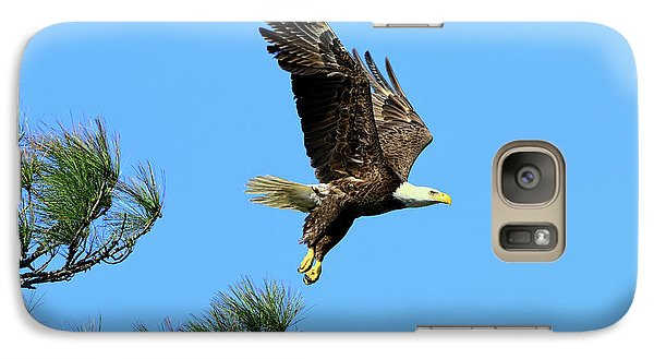 Galaxy Case featuring the photograph Eagle Series 1 2017 by Deborah Benoit