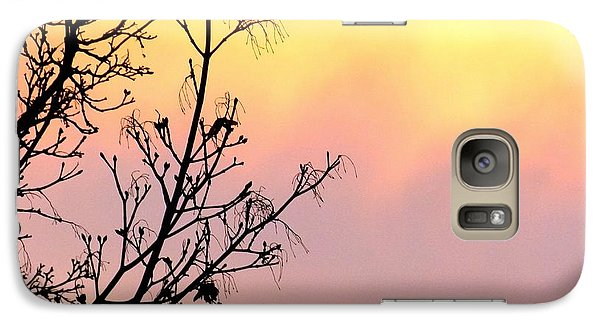 Galaxy Case featuring the photograph Early Spring Sunset by Will Borden