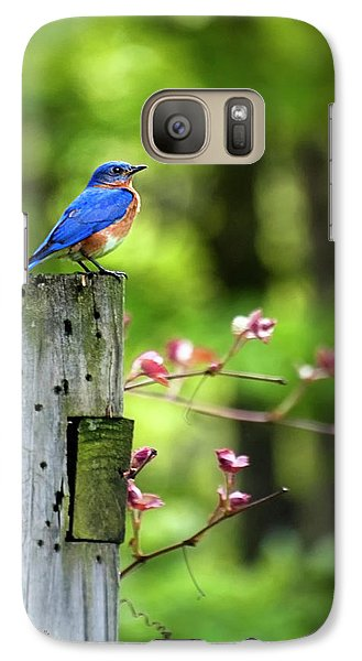 Eastern Bluebird Galaxy S7 Case