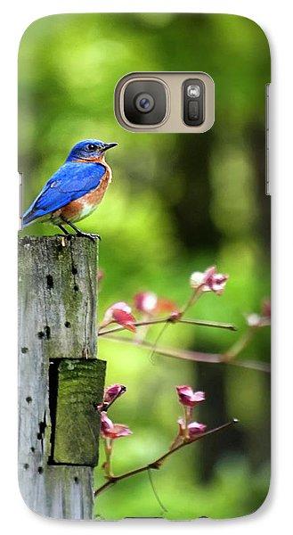 Eastern Bluebird Galaxy S7 Case by Christina Rollo