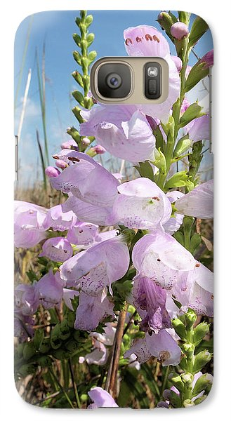 Galaxy Case featuring the photograph Eastern Gray Beardtongue by Scott Kingery