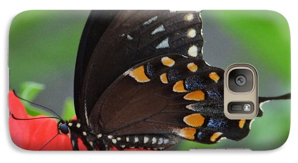 Galaxy Case featuring the photograph Eastern Swallowtail by Penni D'Aulerio