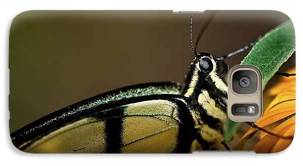 Eastern Tiger Swallowtail Butterfly Galaxy S7 Case by  Onyonet  Photo Studios