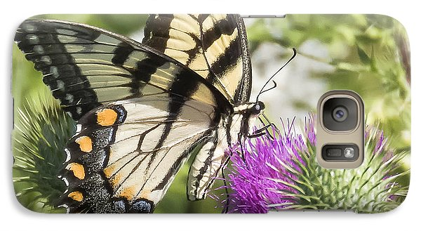 Eastern Tiger Swallowtail Galaxy S7 Case by Ricky L Jones