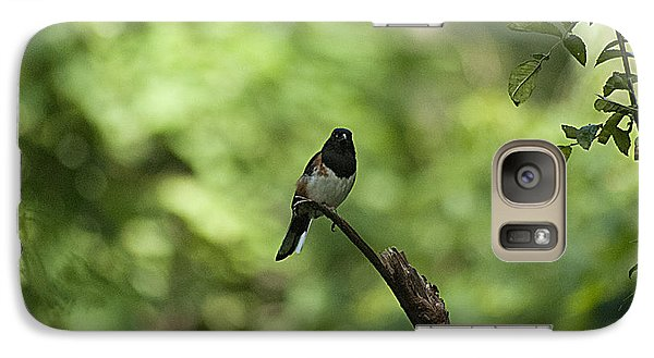 Galaxy Case featuring the photograph Eastern Towhee 20120707_52a by Tina Hopkins
