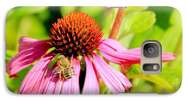 Echinacea Bee Galaxy S7 Case
