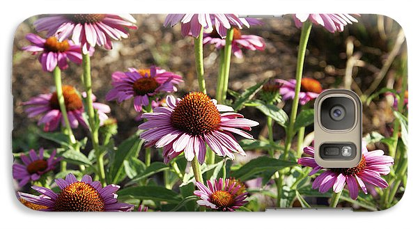 Galaxy Case featuring the photograph Echinacea by Cynthia Powell