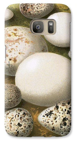 Eggs Galaxy S7 Case