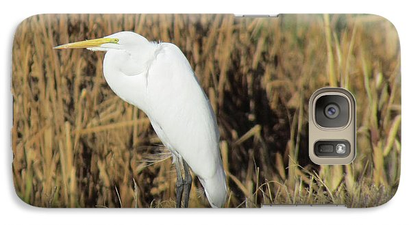 Galaxy Case featuring the photograph Egret In Grass by Bonnie Muir