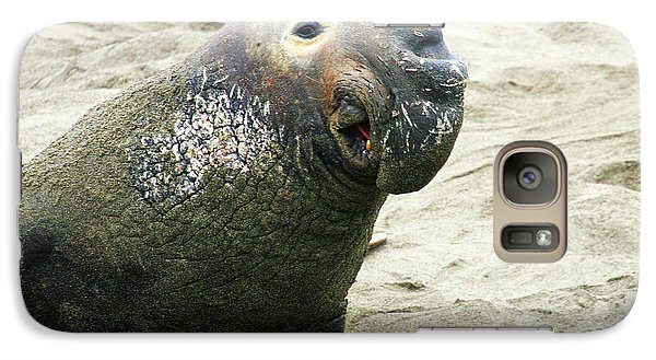 Galaxy Case featuring the photograph Elephant Seal by Anthony Jones