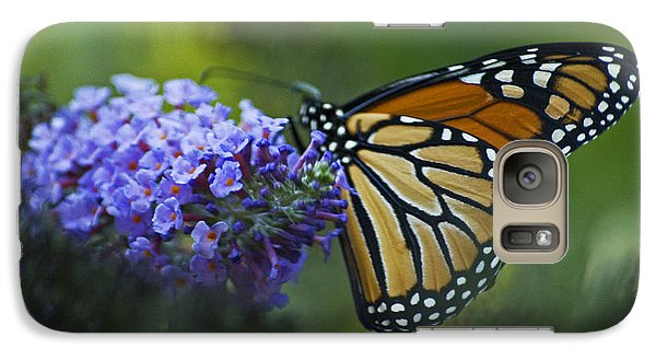 Galaxy Case featuring the photograph Enchanting Monarch by Elsa Marie Santoro