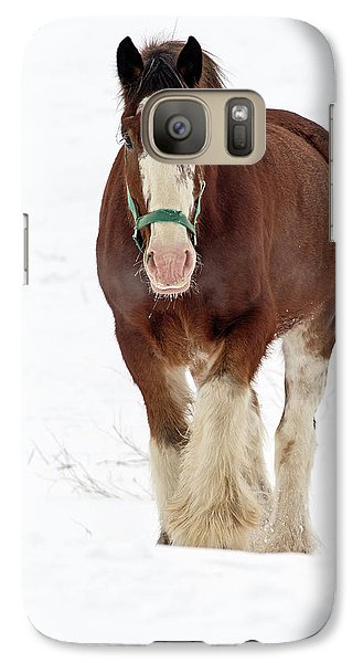 Galaxy Case featuring the photograph Equus Caballus.. by Nina Stavlund