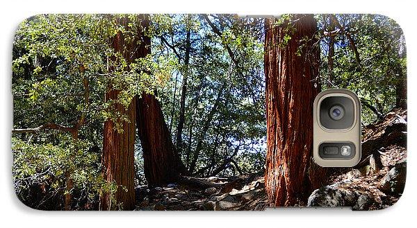 Galaxy Case featuring the photograph Ernie Maxwell Scenic Trail - Idyllwild by Glenn McCarthy