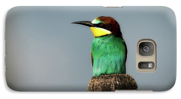 Galaxy Case featuring the photograph European Bee Eater by Wolfgang Vogt