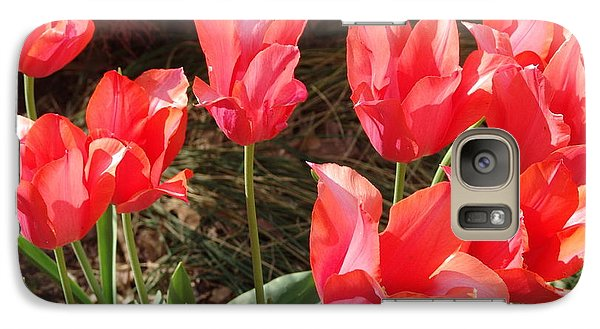 Galaxy S7 Case featuring the photograph Even More Temple Beauty Tulips by Rod Ismay
