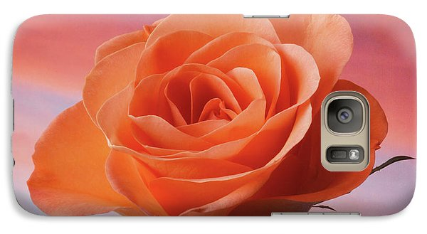 Galaxy Case featuring the photograph Evening Rose by Terence Davis