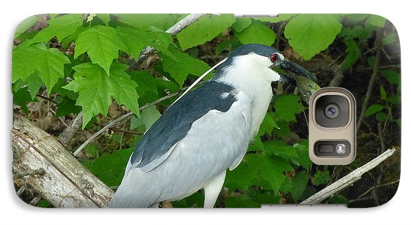 Galaxy Case featuring the photograph Evening Snack For A Night Heron by Donald C Morgan