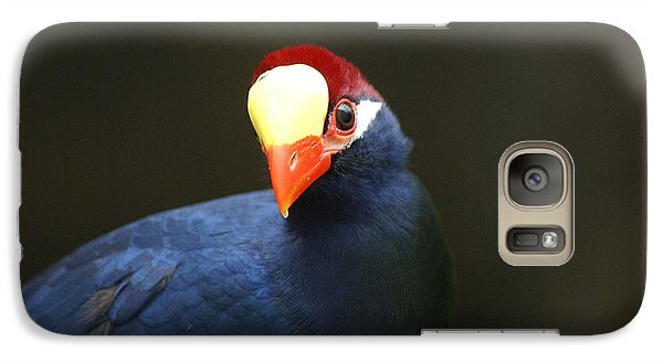 Galaxy Case featuring the photograph Exotic Bird by Heidi Poulin