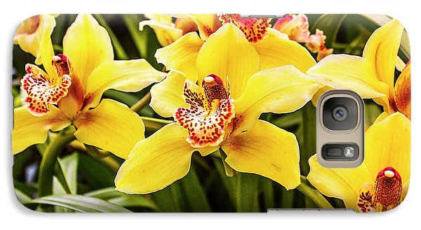 Orchid Galaxy S7 Case - Exotic Orchids  by Jorgo Photography - Wall Art Gallery