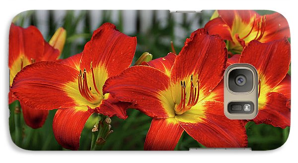 Galaxy Case featuring the photograph Eye Catching by Sandy Keeton