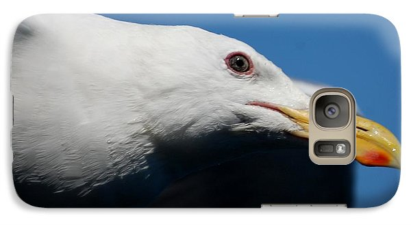 Galaxy Case featuring the photograph Eye Of A Seagull by Sumoflam Photography