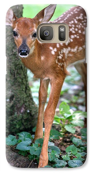 Galaxy Case featuring the photograph Eye To Eye With A Wide - Eyed Fawn by Gene Walls