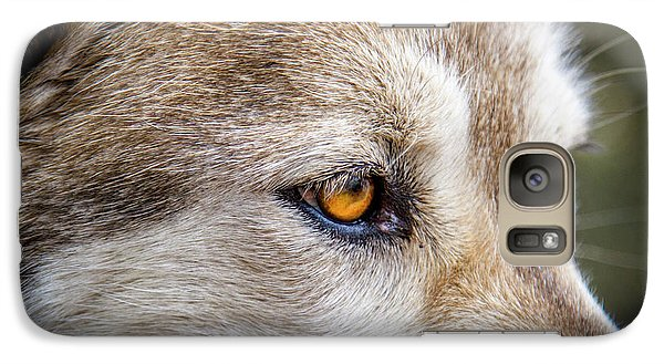 Galaxy Case featuring the photograph Eyes Of The Gray Wolf by Teri Virbickis