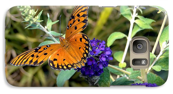 Galaxy Case featuring the photograph Eyes On A Butterfly by Sue Melvin